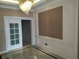 派格森集成墙面视觉与环保的双享受,给你的家添上神采的一笔 (1049播放)