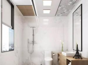 爱尔菲集成顶墙现代风格装修效果图 现代风格装修案例