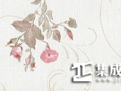 三一阳光集成墙面-墙纸系列S-812/欧泊雅