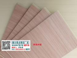宝骏4S店展厅墙面指定颜色 科技木纹