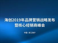 海创2019年品牌营销战略发布暨核心经销商峰会