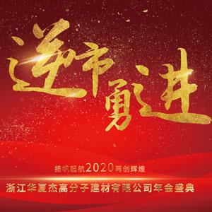 """""""逆市勇进·扬帆起航2020再创辉煌""""华夏杰经销商年会"""