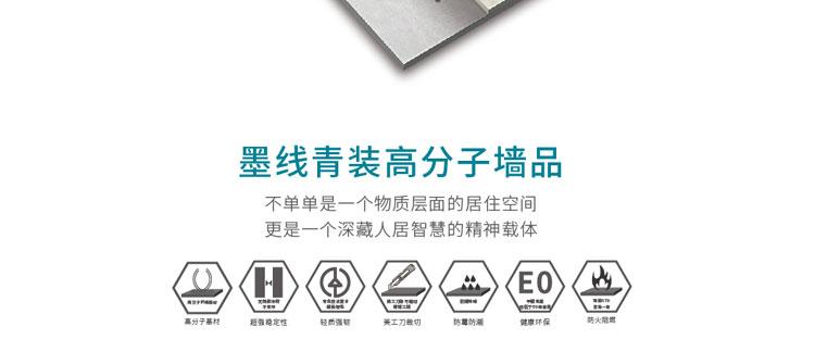 墨线青装墙品招商海报_13