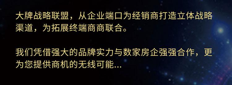 鼎美顶墙集成招商海报_25